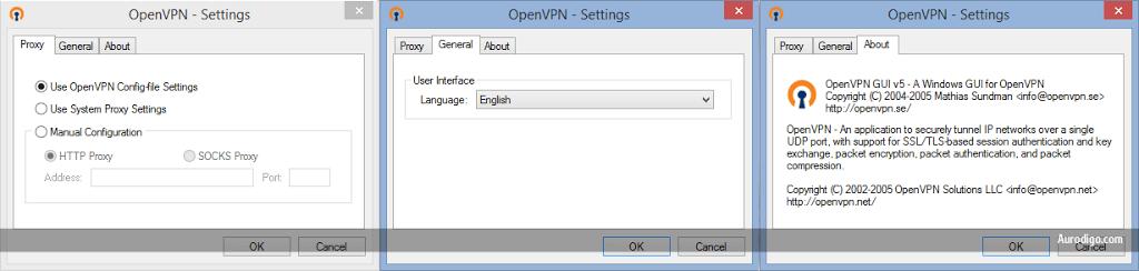 OpenVPN GUI Settings